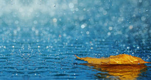 مطر حقيقي