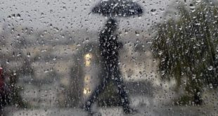 rain-generic-umbrella-raindrops